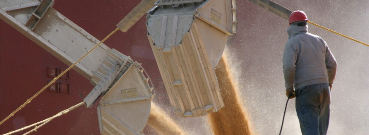 С начала сезона экспорт зерна составил почти 6 млн тонн