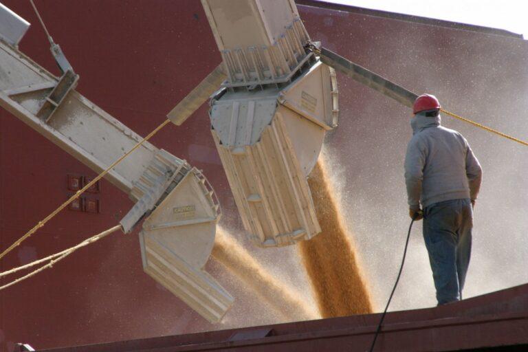 С начала сезона экспорт зерна превысил 54 млн тонн