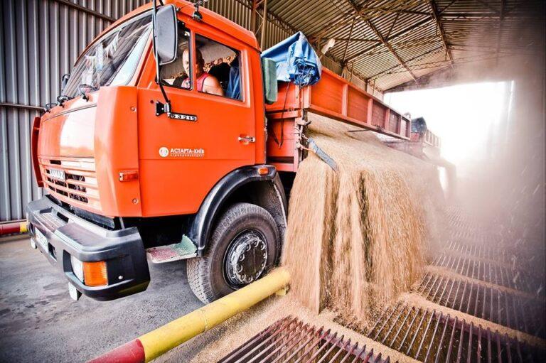 Кабмин упростил международную торговлю зерном