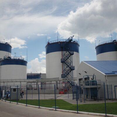 Завод Bunge в Николаеве переработал 1 млн тонн подсолнечника в 2020 году