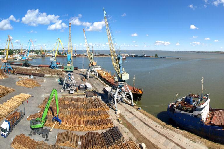 Украина к концу года может разрешить экспорт древесины