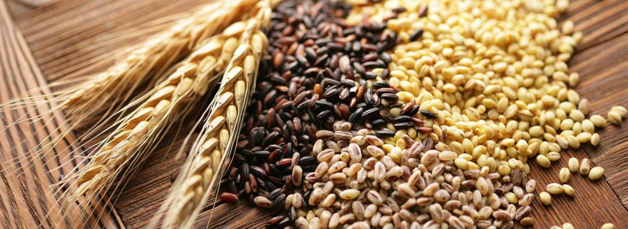 УЗА улучшила прогноз экспорта зерновых в 2020-2021 МГ
