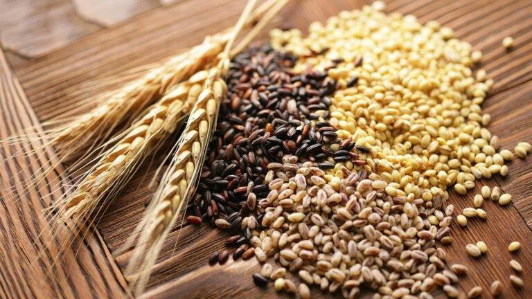С начала сезона ГПЗКУ приняла на хранение 200 тыс. тонн зерновых