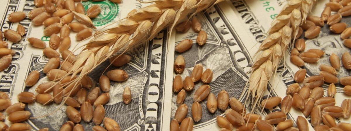 Минэкономики начало диалог для выполнения форвардных контрактов сельхозпроизводителей