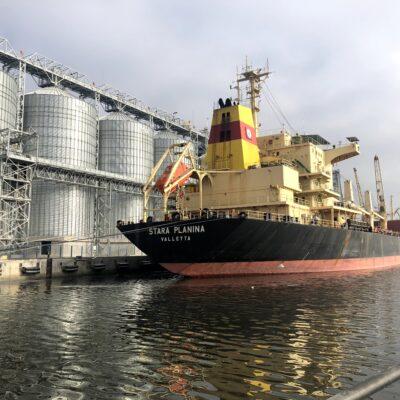 Морпорты сократили перевалку зерна за две недели на 44%