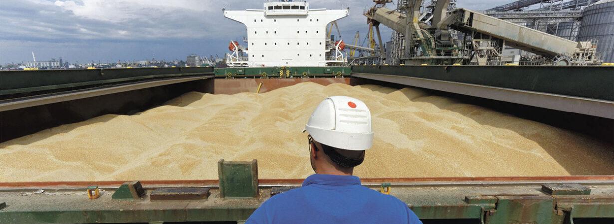 С начала сезона экспорт зерна составил 56,2 млн тонн