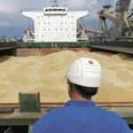 Украина стала вторым в мире экспортером зерна в 2019-2020 МГ
