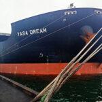 Госстивидор «Южный» догружает кейпсайз дедвейтом 208 тыс. тонн