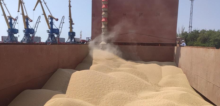 С начала сезона объем экспорта зерна уступает прошлогоднему в 2,3 раза
