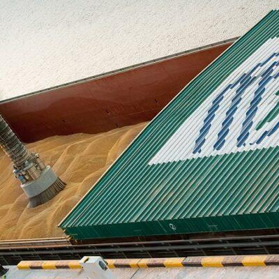 В минувшем сезоне «Нибулон» отправил на экспорт 4,9 млн тонн зерновых и масличных