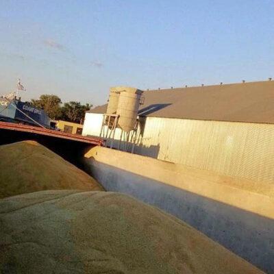 «Грейн-Трансшипмент» начала отгрузку ячменя нового урожая по реке