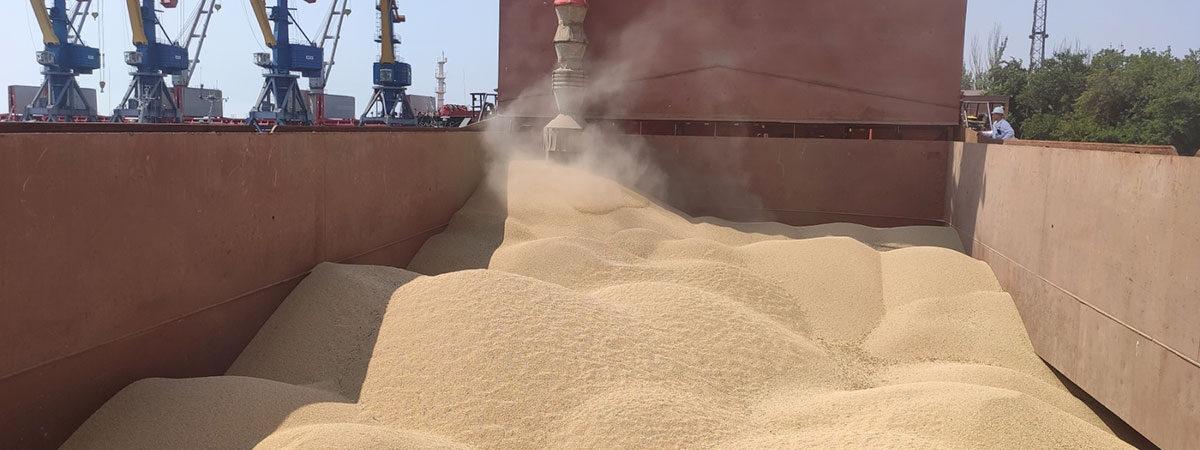 Harveast экспортировала через Мариупольский порт первую партию гороха нового урожая