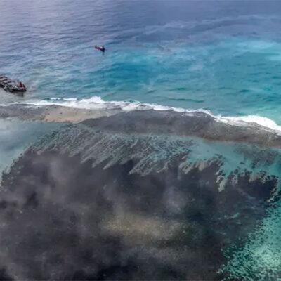 MOL извинилась за разлив более 1 тыс. тонн нефти около Маврикия