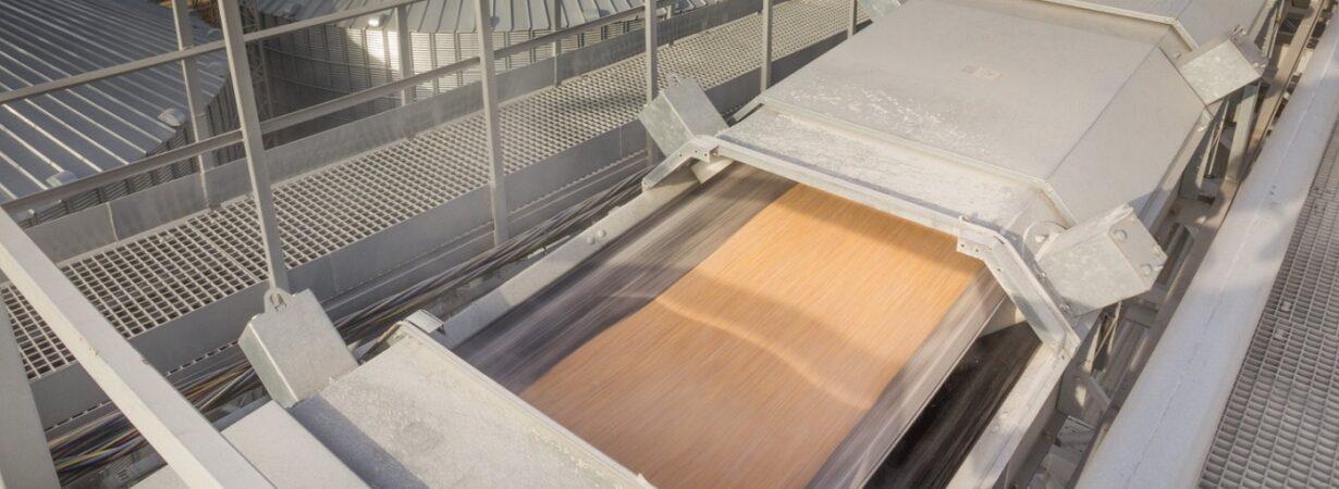 С начала сезона экспорт зерна превысил 8 млн тонн