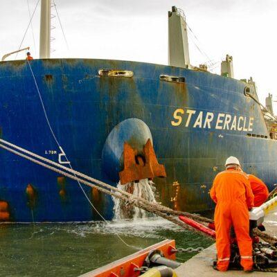 За год после официального открытия терминал Neptune достиг объема перевалки 2,5 млн тонн