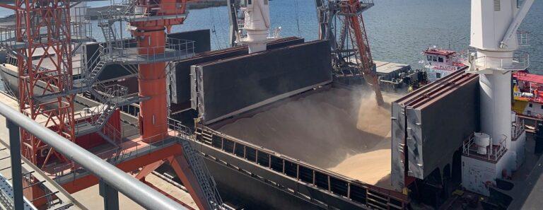 С начала сезона экспорт зерна превысил 10 млн тонн