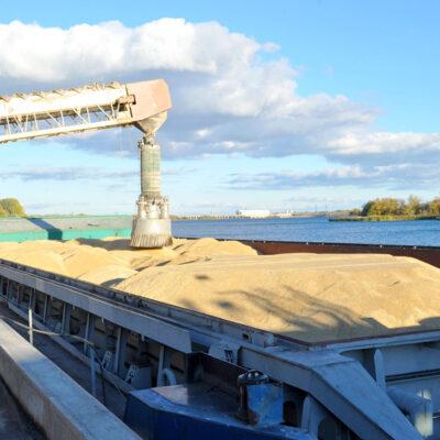 Экспорт зерна отстает на 12 тыс. тонн от графика прошлого сезона
