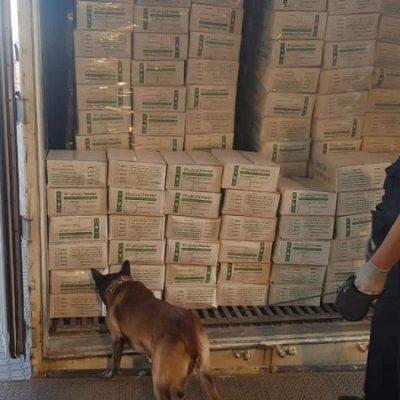 Через «Пивденный» и Одесский порты пытались переправить рекордную партию психотропов стоимостью $30 млн
