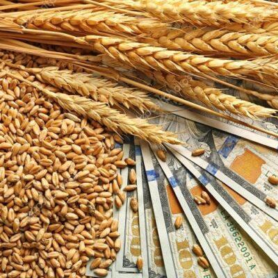 Крупный бизнес за три года вывел из Украины более $22 млрд — ГНС