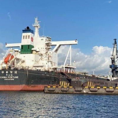 Судозаходы: пять крупнейших судов порта «Пивденный» в октябре