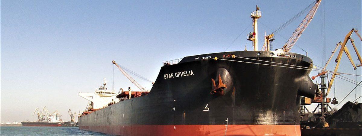 Судозаходы: пятерка крупнейших судов порта «Пивденный» в декабре