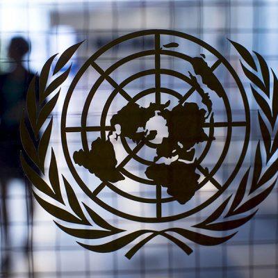 Украина присоединилась к Комитету по всемирной продовольственной безопасности ООН