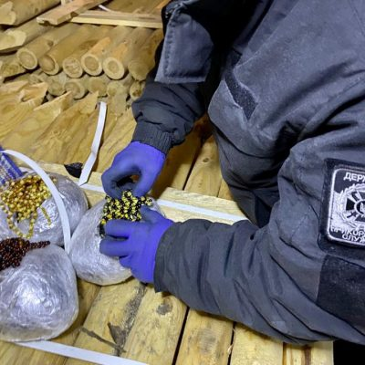 Пограничники пресекли попытку контрабанды янтаря через порт Черноморск