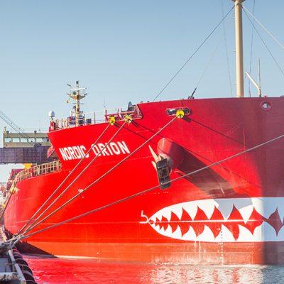 В порт ТИС зашло необычное судно