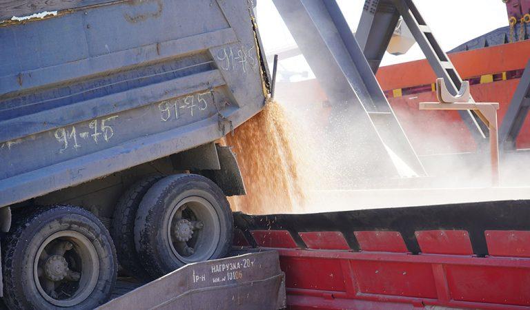Украина экспортировала 5,6 млн тонн зерна в сентябре