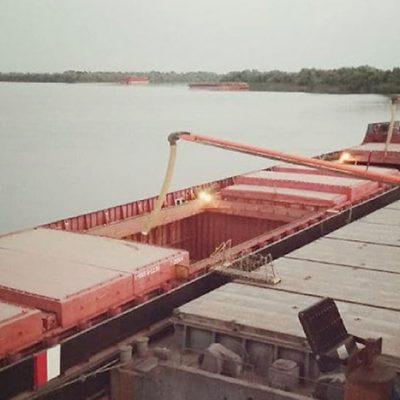 «Краншип» отправил из порта «Усть-Дунайск» первую партию зерна нового урожая