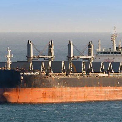 Госстивидор «Черноморск» разгружает балкер с углем из США