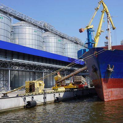 Экспорт зерна опережает график прошлого сезона почти в полтора раза