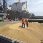 Порт «Пивденный» установил единую недискриминационную скидку к портовым сборам при перевалке зерновых — АМПУ