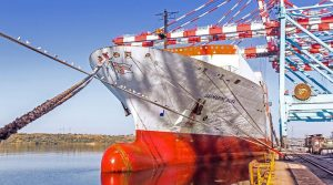 DP World TIS Pivdennyi начал обслуживать линию L74 Maersk
